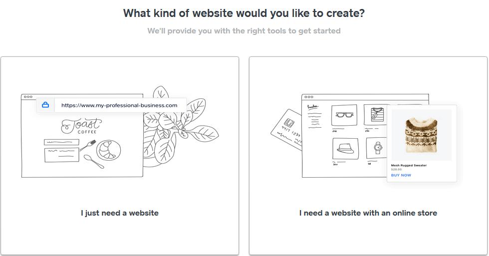 choose between website and online store